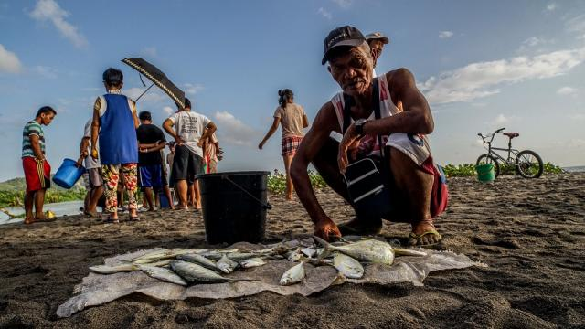 Farmers and fishermen saw their income drop by 60% during the COVID-19 crisis. Photo credit: ADB.